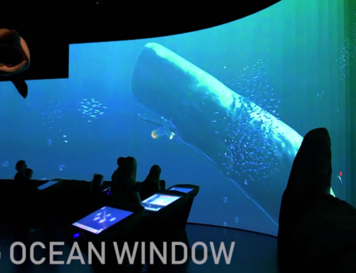 Big Ocean Window – Digital Aquarium